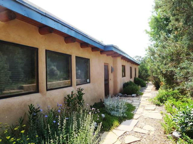 173 County Road B006, Taos, NM 87571 (MLS #100301) :: Page Sullivan Group | Coldwell Banker Lota Realty