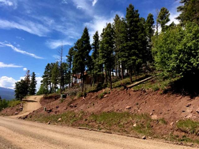 Lot 207 Chalet II, Angel Fire, NM 87710 (MLS #100303) :: Page Sullivan Group | Coldwell Banker Lota Realty
