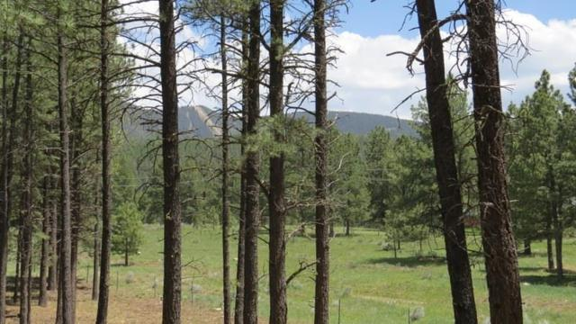 Lot 1 Block 2 Cieneguilla Estates, Angel Fire, NM 87710 (MLS #100324) :: Angel Fire Real Estate & Land Co.