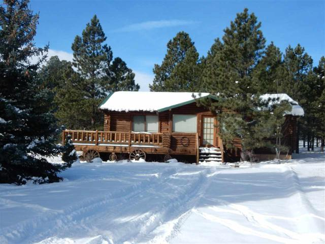13 Sawmill Ridge, Angel Fire, NM 87710 (MLS #100344) :: Page Sullivan Group | Coldwell Banker Lota Realty