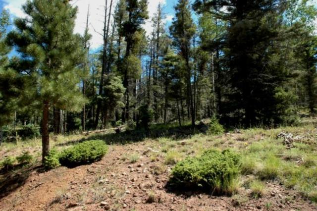 Lot 478 Vail Loop, Angel Fire, NM 87710 (MLS #100368) :: The Chisum Realty Group