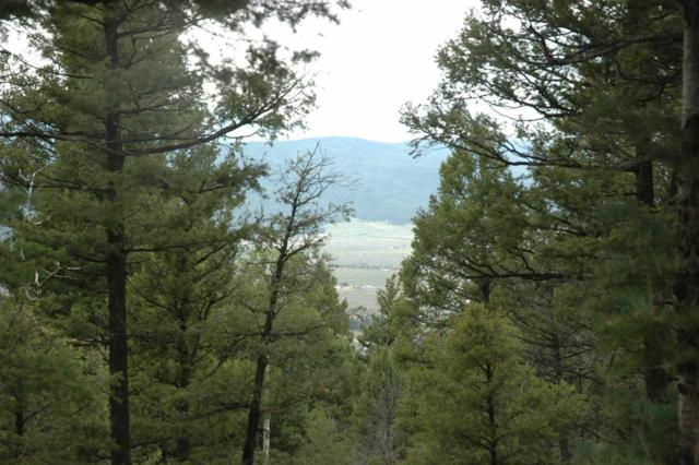 Lot 317 S Vail Overlook, Angel Fire, NM 87558 (MLS #100377) :: Page Sullivan Group | Coldwell Banker Lota Realty