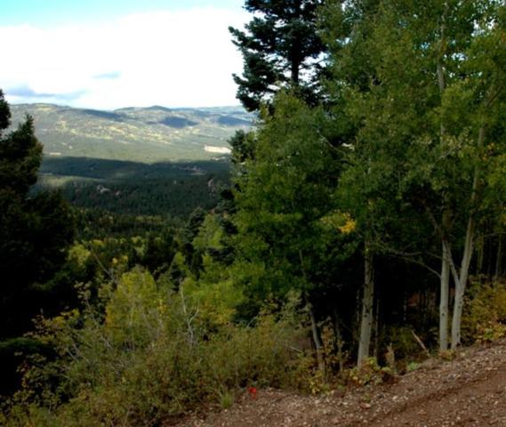 Lot 602 Panorama Way, Angel Fire, NM 87710 (MLS #100381) :: The Power of Teamwork Group