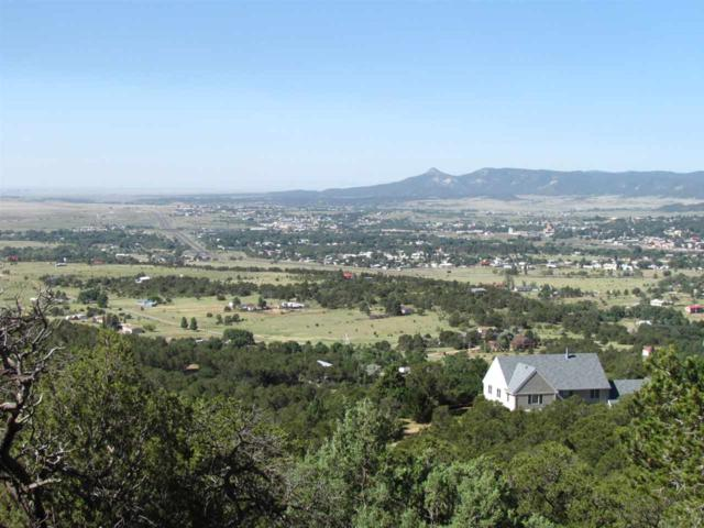 255 Trail Canyon Rd., Raton, NM 87714 (MLS #100392) :: The Chisum Group