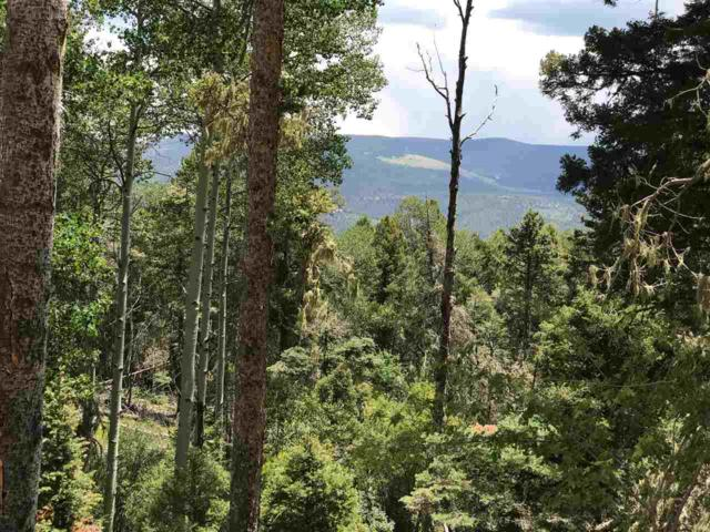 Lot 102 Zia Rd, Angel Fire, NM 87710 (MLS #100399) :: The Chisum Group