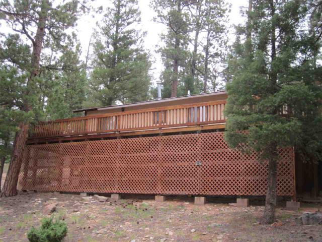 #33 Road 9, Idlewild, NM 87718 (MLS #100403) :: The Chisum Group