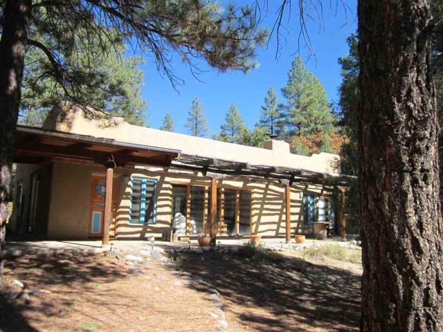 31 Deer Mesa Road, Taos, NM 87571 (MLS #100408) :: Page Sullivan Group   Coldwell Banker Lota Realty
