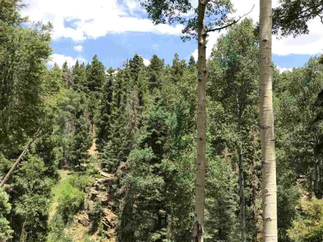 LOT 45 Sacramento Dr., Angel Fire, NM 87710 (MLS #100411) :: Page Sullivan Group | Coldwell Banker Lota Realty