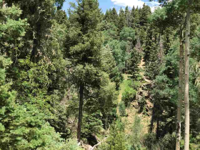 Lot 46 Sacramento Drive, Angel Fire, NM 87710 (MLS #100412) :: Page Sullivan Group | Coldwell Banker Lota Realty
