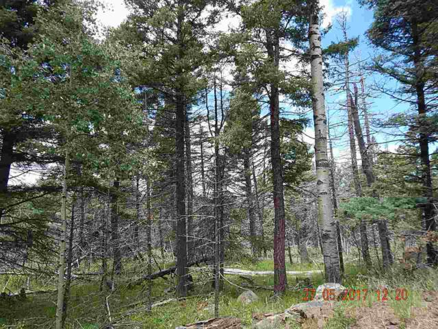 Lot 1225 Rainbow Overlook, Angel Fire, NM 87710 (MLS #100413) :: Page Sullivan Group | Coldwell Banker Lota Realty