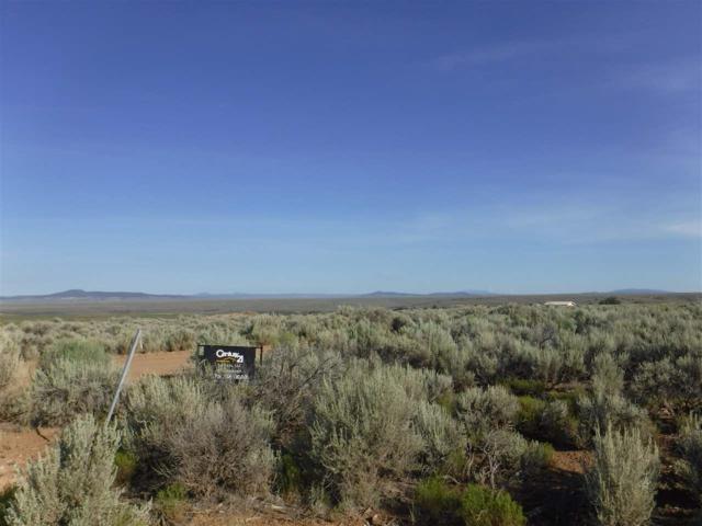 Camino De Los Vecinos, Taos, NM 87571 (MLS #100414) :: Page Sullivan Group   Coldwell Banker Lota Realty