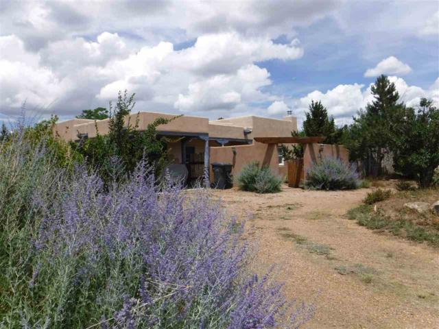 310 Trapper, Taos, NM 87571 (MLS #100415) :: Page Sullivan Group | Coldwell Banker Lota Realty