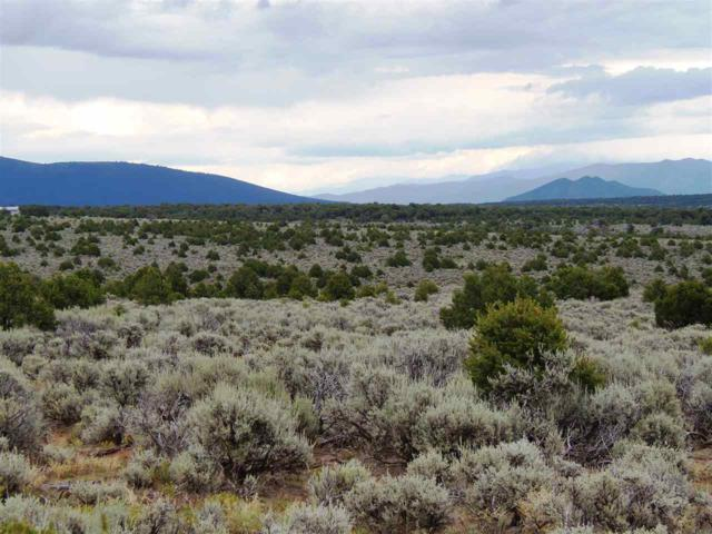 7 10ths mile Colorado Rd On Rt, Tres Piedras, NM 87577 (MLS #100433) :: Page Sullivan Group