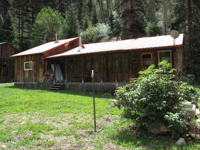 250 Bitter Creek Road, Red River, NM 87558 (MLS #100502) :: Page Sullivan Group | Coldwell Banker Lota Realty