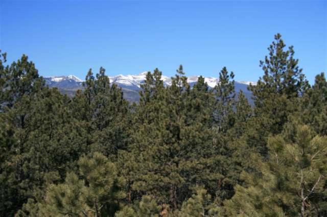 Lot 17 Halo Estates, Angel Fire, NM 87710 (MLS #100506) :: Angel Fire Real Estate & Land Co.