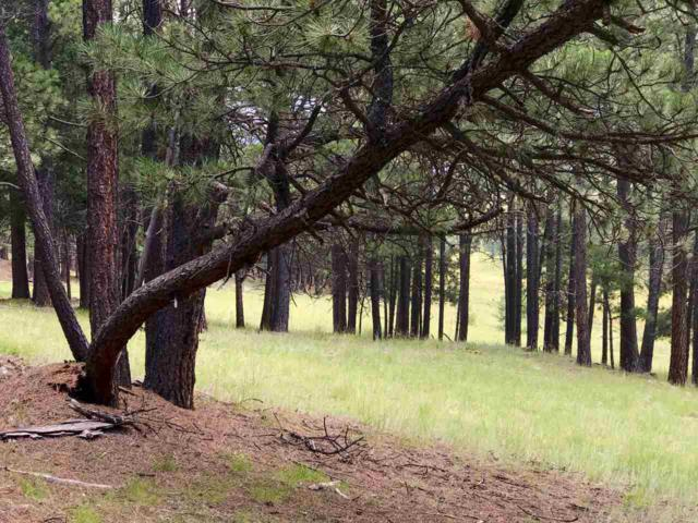 Lot 79 San Juan Drive, Angel Fire, NM 87710 (MLS #100526) :: Page Sullivan Group | Coldwell Banker Lota Realty