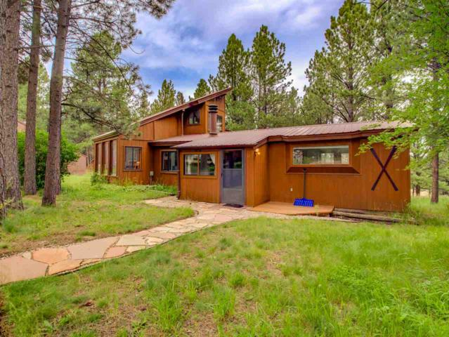 87 Halo Pines Terrace, Angel Fire, NM 87710 (MLS #100534) :: Page Sullivan Group | Coldwell Banker Lota Realty