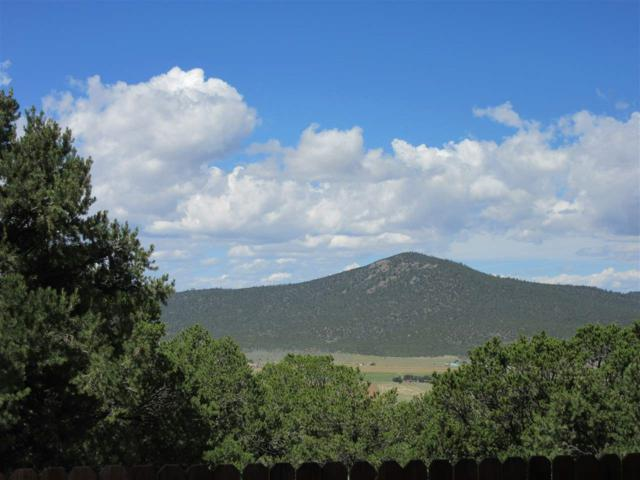 27 Lower Pinabete, Questa, NM 87556 (MLS #100557) :: Page Sullivan Group | Coldwell Banker Lota Realty