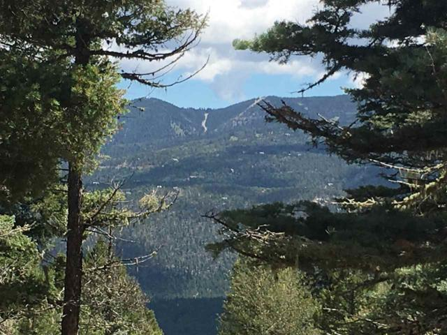 Zia Road, Angel Fire, NM 87710 (MLS #100565) :: Page Sullivan Group | Coldwell Banker Lota Realty