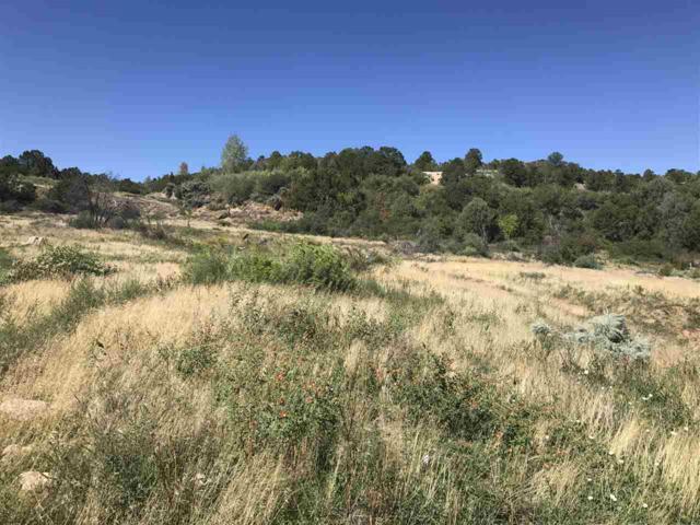 Vista Del Valle, Ranchos de Taos, NM 87557 (MLS #100577) :: Page Sullivan Group