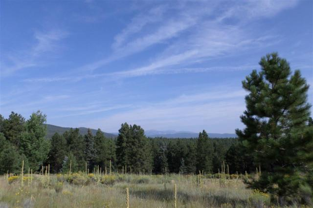 456 San Mateo, Angel Fire, NM 87710 (MLS #100581) :: The Chisum Realty Group