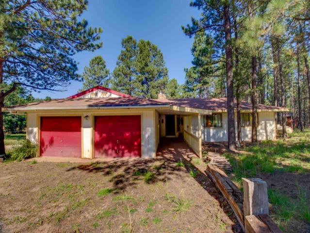 41 Pine Valley Dr, Angel Fire, NM 87710 (MLS #100615) :: Page Sullivan Group | Coldwell Banker Lota Realty