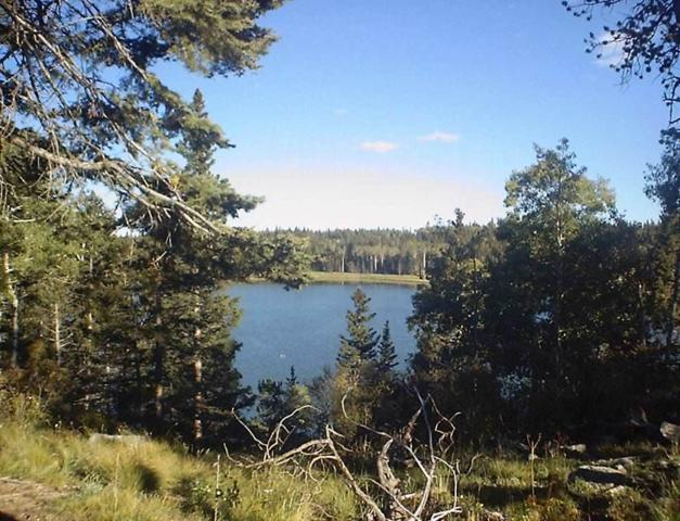 Lot 59 A & B Hidden Lake Circle, Angel Fire, NM 87710 (MLS #100619) :: Page Sullivan Group | Coldwell Banker Lota Realty