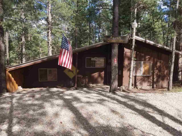 Cabin 38 Road 4, Eagle Nest, NM 87718 (MLS #100621) :: The Chisum Group