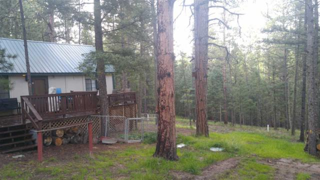 15 Road 11, Eagle Nest, NM 87718 (MLS #100628) :: The Chisum Group