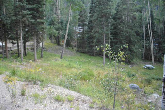 14 Pattison Loop, Taos Ski Valley, NM 87525 (MLS #100663) :: The Chisum Group