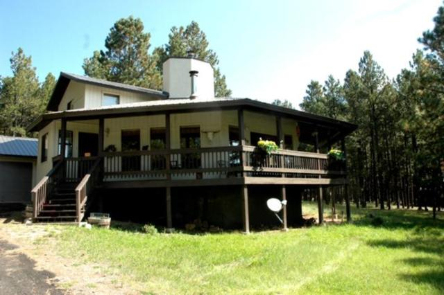 120 Golf View Terrace, Angel Fire, NM 87710 (MLS #100665) :: Page Sullivan Group | Coldwell Banker Lota Realty