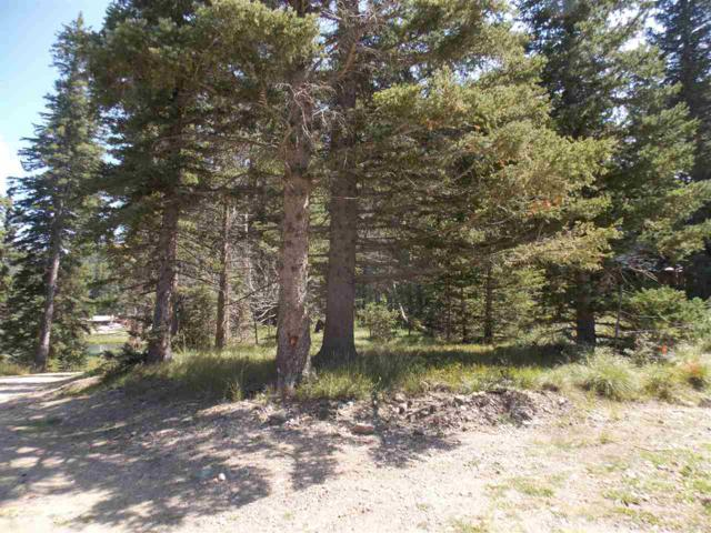 207 Mountain View, Red River, NM 87558 (MLS #100676) :: The Chisum Group