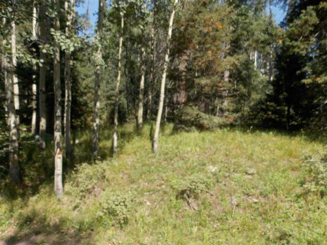 403 Shady Lane, Red River, NM 87558 (MLS #100677) :: The Chisum Group