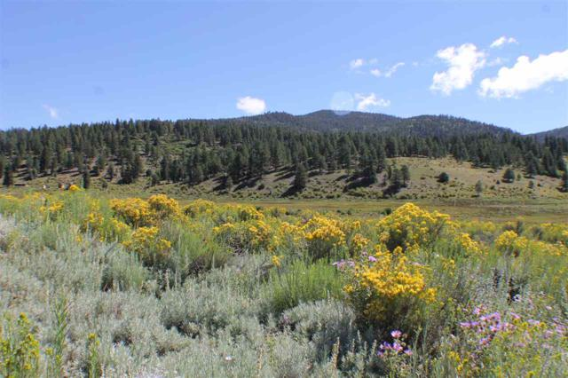 Tract A-1 Cinquefoil Lane, Taos, NM 87571 (MLS #100680) :: The Chisum Group
