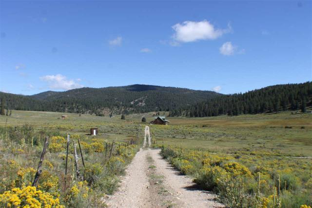 Tract A-3 Cinquefoil Lane, Taos, NM 87571 (MLS #100682) :: The Chisum Group