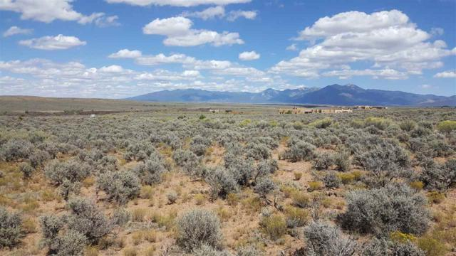 Lot 14B County Rd. 110, Ranchos de Taos, NM 87571 (MLS #100707) :: Page Sullivan Group | Coldwell Banker Lota Realty