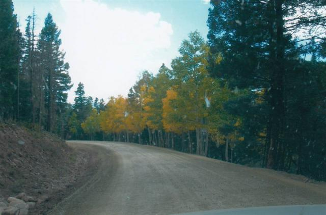 Lot 82 Back Basin Road, Angel Fire, NM 87710 (MLS #100718) :: Page Sullivan Group | Coldwell Banker Lota Realty