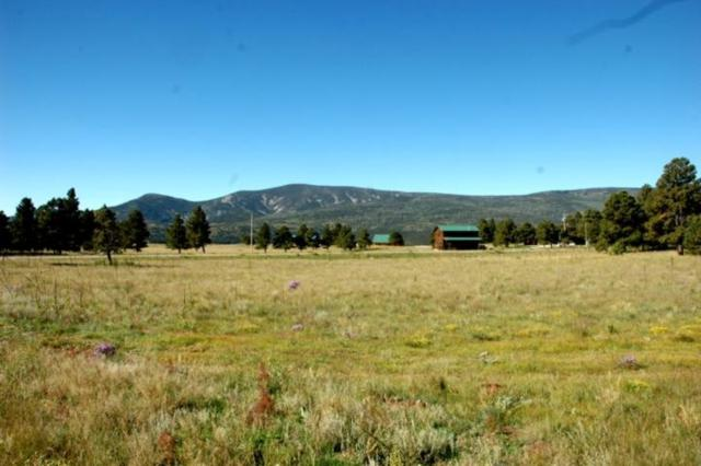 Lot 15 Camino De Norma, Black Lake, NM 87710 (MLS #100734) :: Page Sullivan Group | Coldwell Banker Lota Realty
