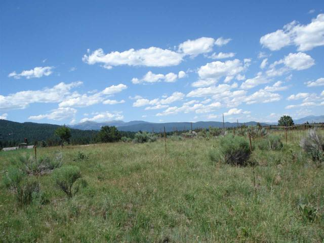 Lot 198 Preston Trail, Angel Fire, NM 87710 (MLS #100751) :: Page Sullivan Group | Coldwell Banker Mountain Properties