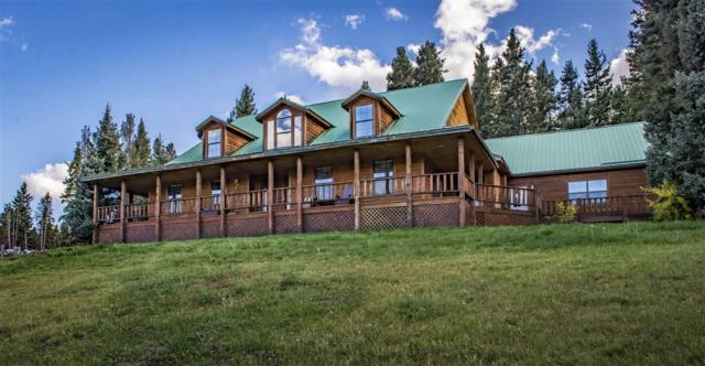 1670 Bobcat Pass, Red River, NM 87558 (MLS #100767) :: The Chisum Realty Group