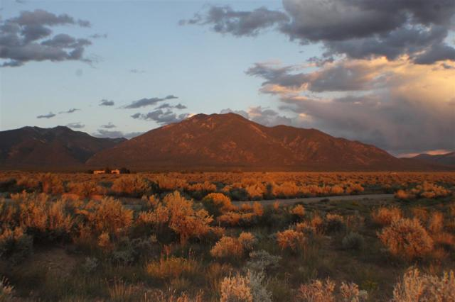 Buggy Road, Taos, NM 87571 (MLS #100776) :: The Chisum Group