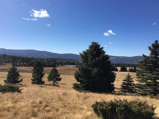Lot 65 Valley Of The Utes, Angel Fire, NM 87710 (MLS #100795) :: The Chisum Group