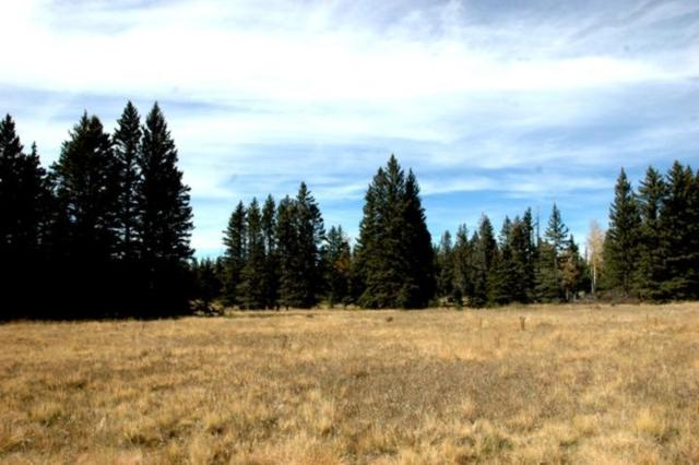 Lot 76 Ute Valley Dr., Angel Fire, NM 87710 (MLS #100806) :: Page Sullivan Group | Coldwell Banker Lota Realty