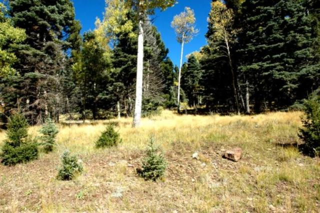 Lot 1476 Panorama Way, Angel Fire, NM 87710 (MLS #100852) :: Page Sullivan Group | Coldwell Banker Lota Realty
