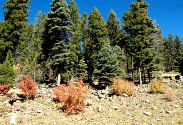 Lot 1296 Pleasant Valley Overlook, Angel Fire, NM 87710 (MLS #100853) :: Page Sullivan Group | Coldwell Banker Lota Realty