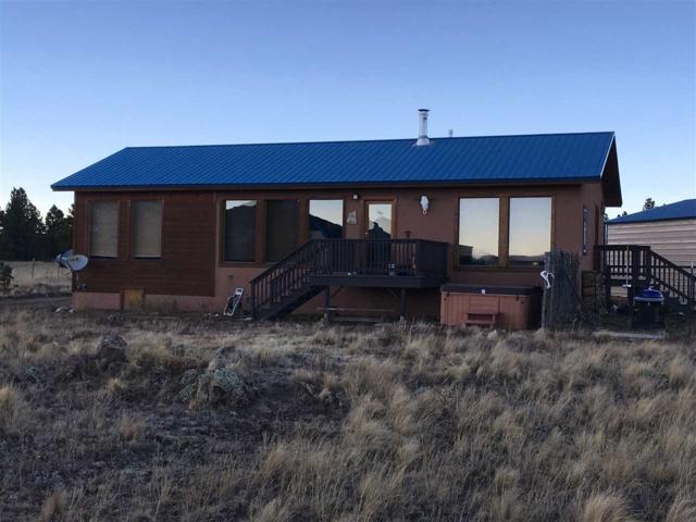 Lot 29 Whymans Black Lake Estates, Black Lake, NM 87722 (MLS #100855) :: The Chisum Group