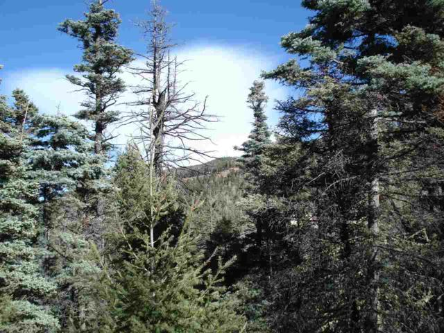 Lot 372 Vail Loop, Angel Fire, NM 87710 (MLS #100860) :: The Chisum Realty Group