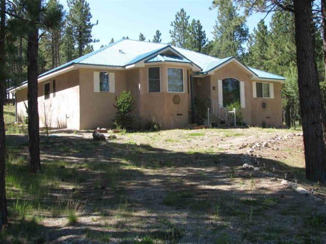 61 Sarazen Terrace, Angel Fire, NM 87710 (MLS #100866) :: Page Sullivan Group | Coldwell Banker Lota Realty