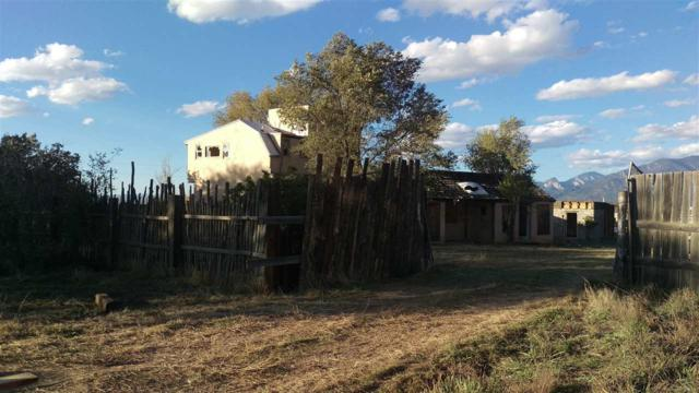 317 Este Es Place, Taos, NM 87557 (MLS #100871) :: Page Sullivan Group | Coldwell Banker Lota Realty