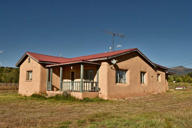 10 Hondo Seco Rd, Arroyo Hondo, NM 87153 (MLS #100889) :: The Chisum Group